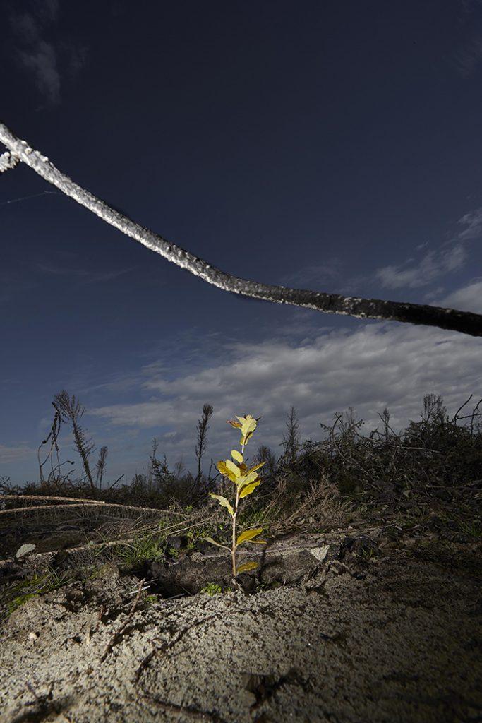 """Andrea Delai """"Incendio al lido, il senso del vuoto"""" 2014"""